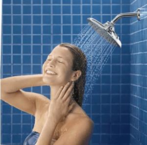 Delta vs Moen vs Kohler Shower Head