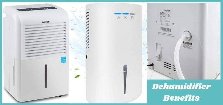 Dehumidifier Benefits According to Reddit